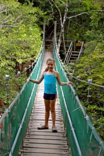bridge to hot springs