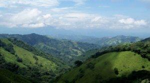 Costa Rica coffee mts