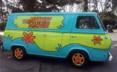 Should we paint our car?